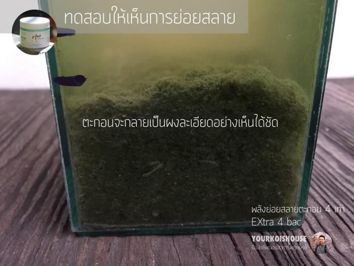 จุลินทรีย์ บ่อปลา Extra 4 bac