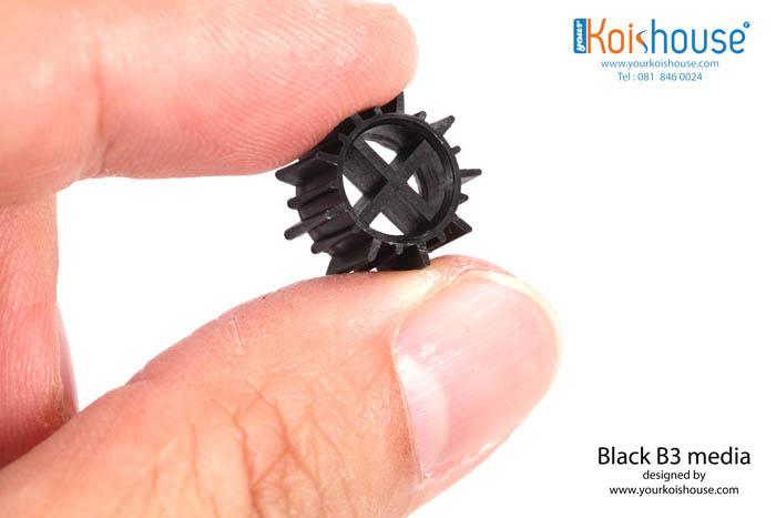 Black B3_4s