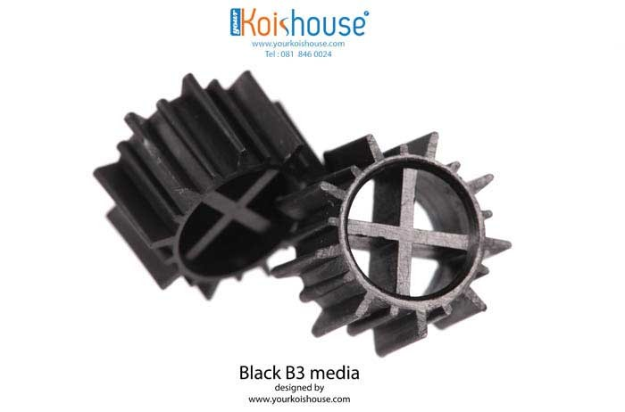 Black-B3_1s1